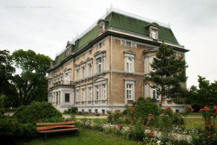 Pałac w Pogrzebieniu – VI 2012