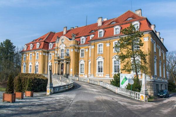 Pałac w Kochcicach – luty 2016