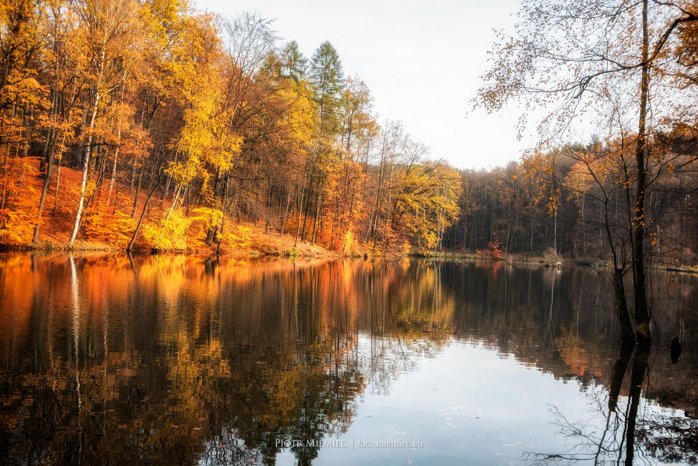 rzeki i jeziora na śląsku