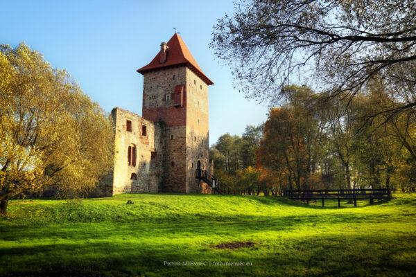 Zamek w Chudowie