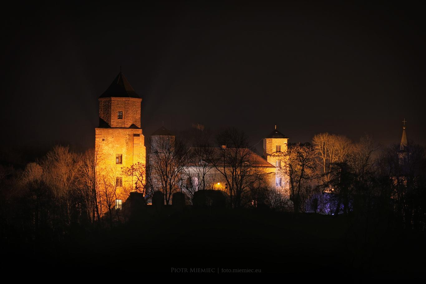 Zamek Toszek