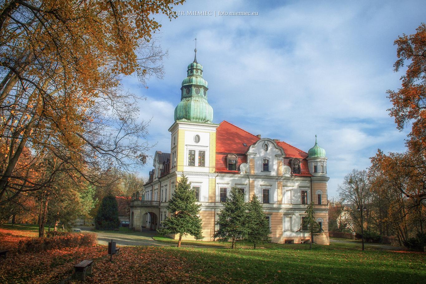 Pałac Kamieniec - 9