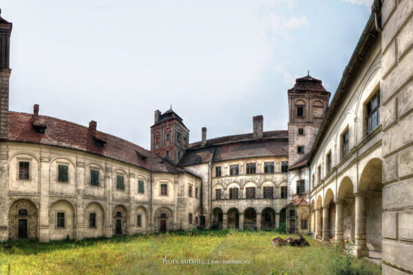 Zamek Niemodlin – sierpień 2015