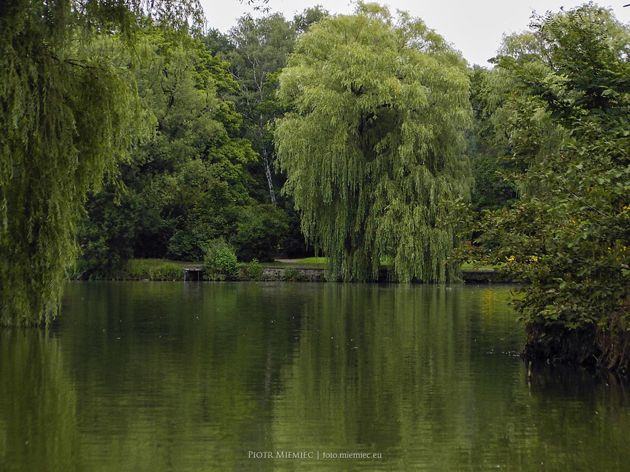 Wojewódzki Park Kultury i Wypoczynku