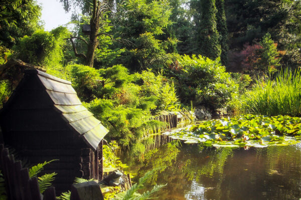 Ogród w Bujakowie