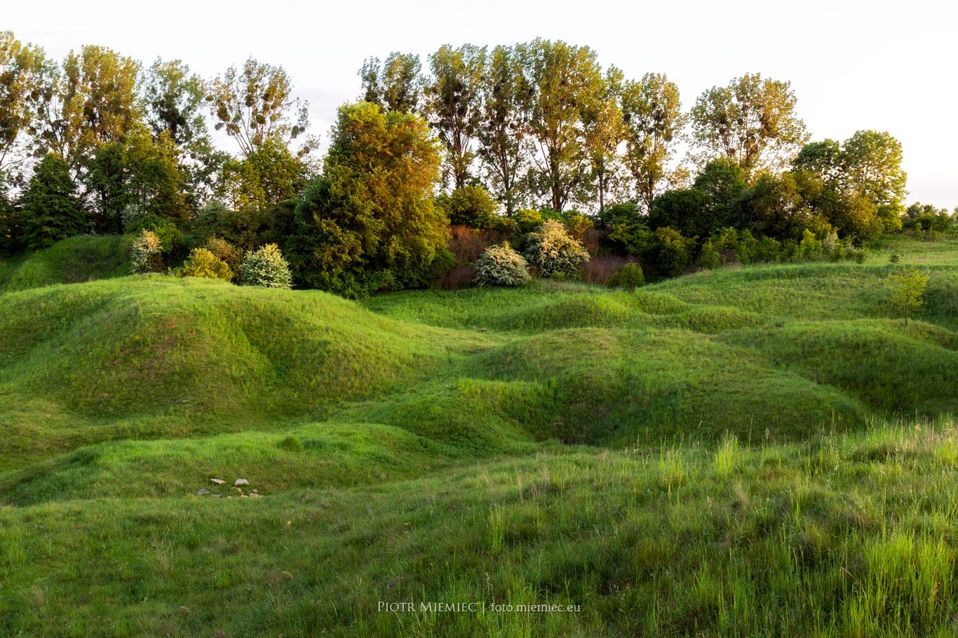 Pogórniczy krajobraz Tarnowskich Gór