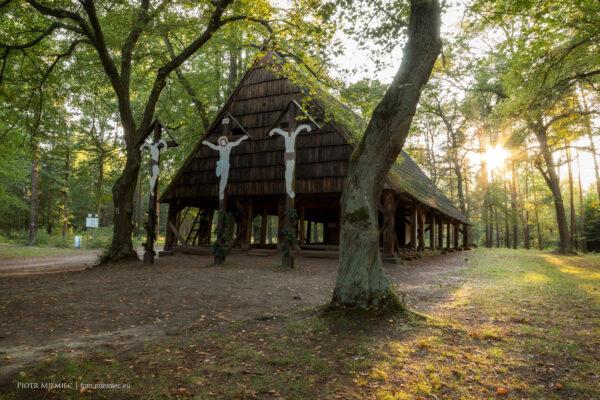 Rudzkie lasy – Magdalenka