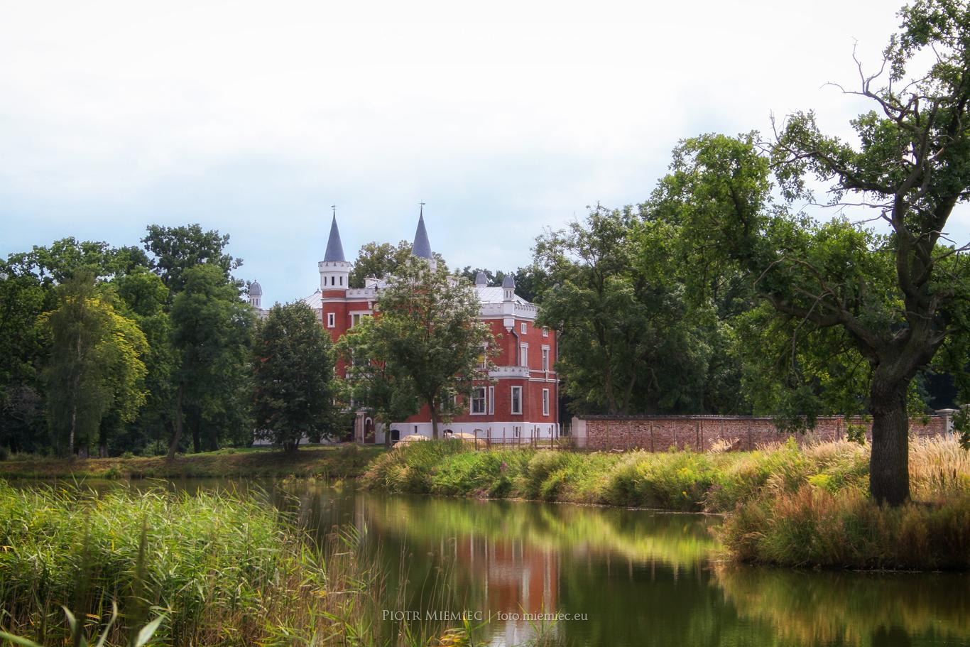 Pałac w Sałszy