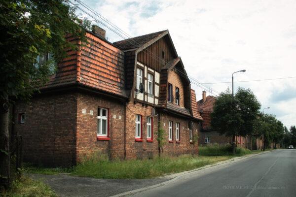 Familoki w Czerwiące-Leszczynach – lipiec 2010