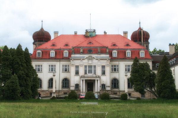 Pałac w Brynku – maj 2008