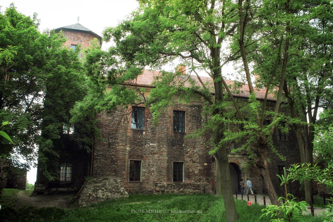 Zamek w Toszku – maj 2008