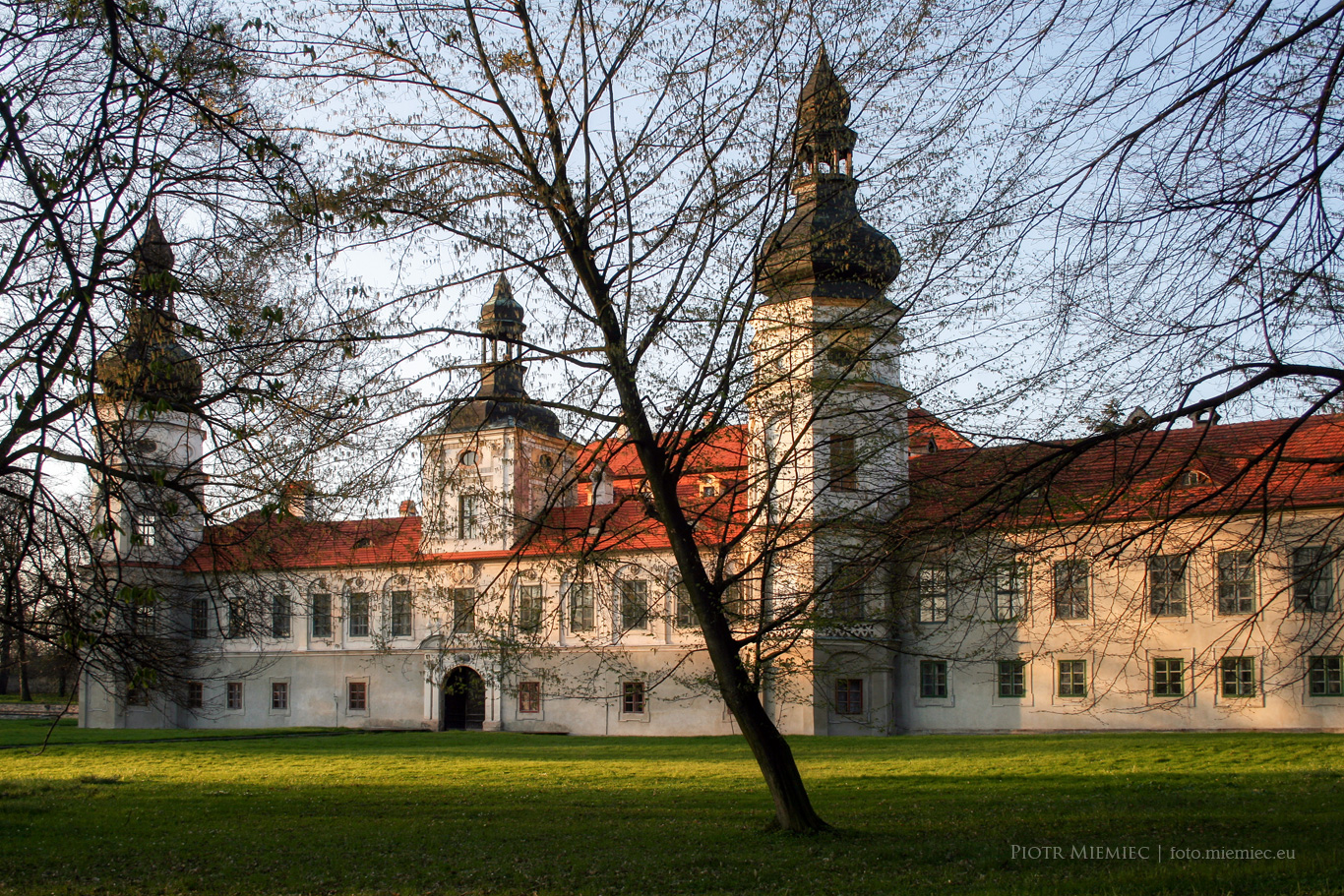 Pałac w Żyrowej
