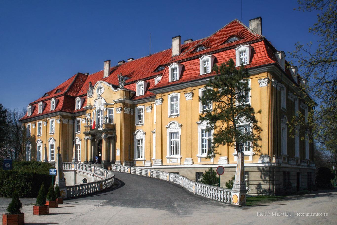 Kochcice pałac - 4