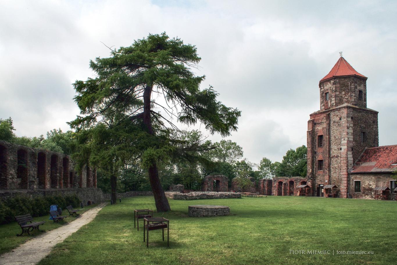 Toszek zamek IMG_5010
