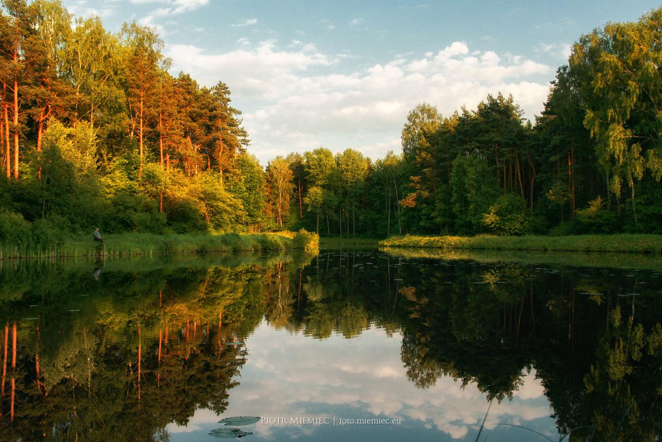Tarnowskie Góry Pniowiec IMG_9708