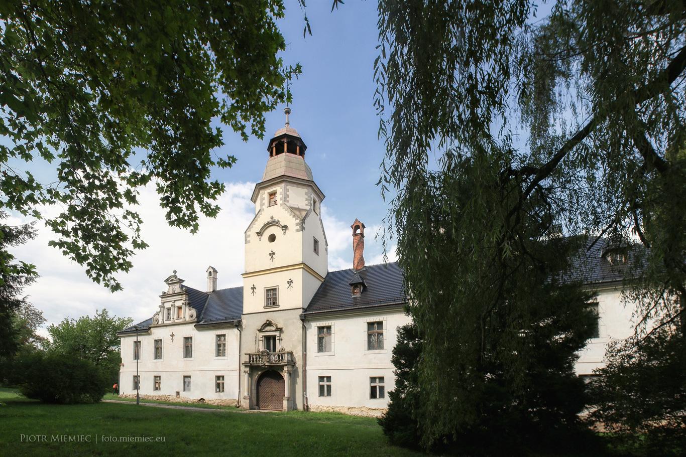 Zamek w Dąbrowie