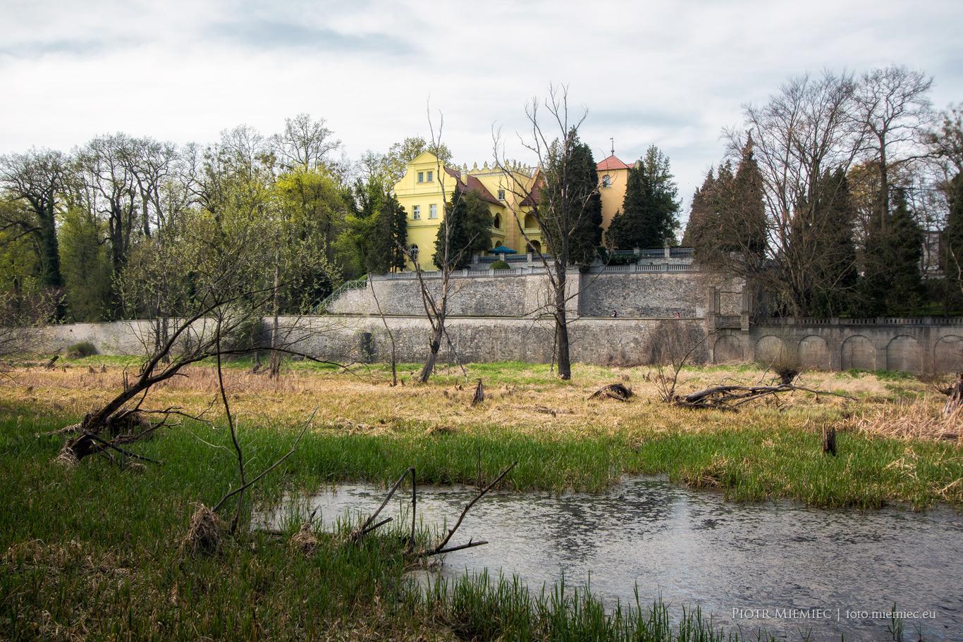 Zamek w Rogowie Opolskim