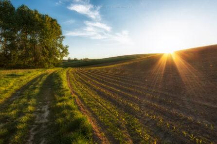 Wiejskie klimaty okolic Raciborza