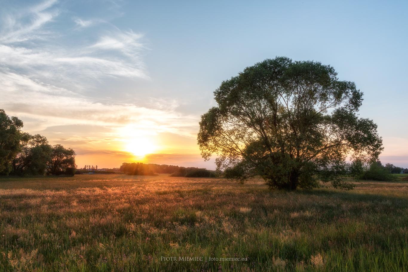 Paniówki zachód słońca IMG_8349