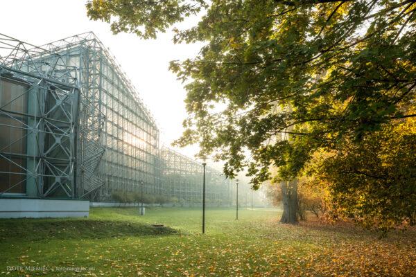Jesień w Parku Chopina