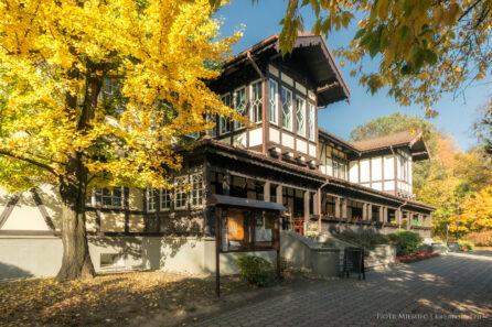 Jesień w Jastrzębiu Zdroju