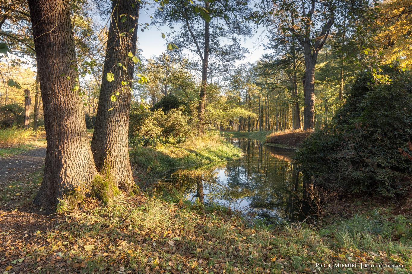 Moszna park jesień