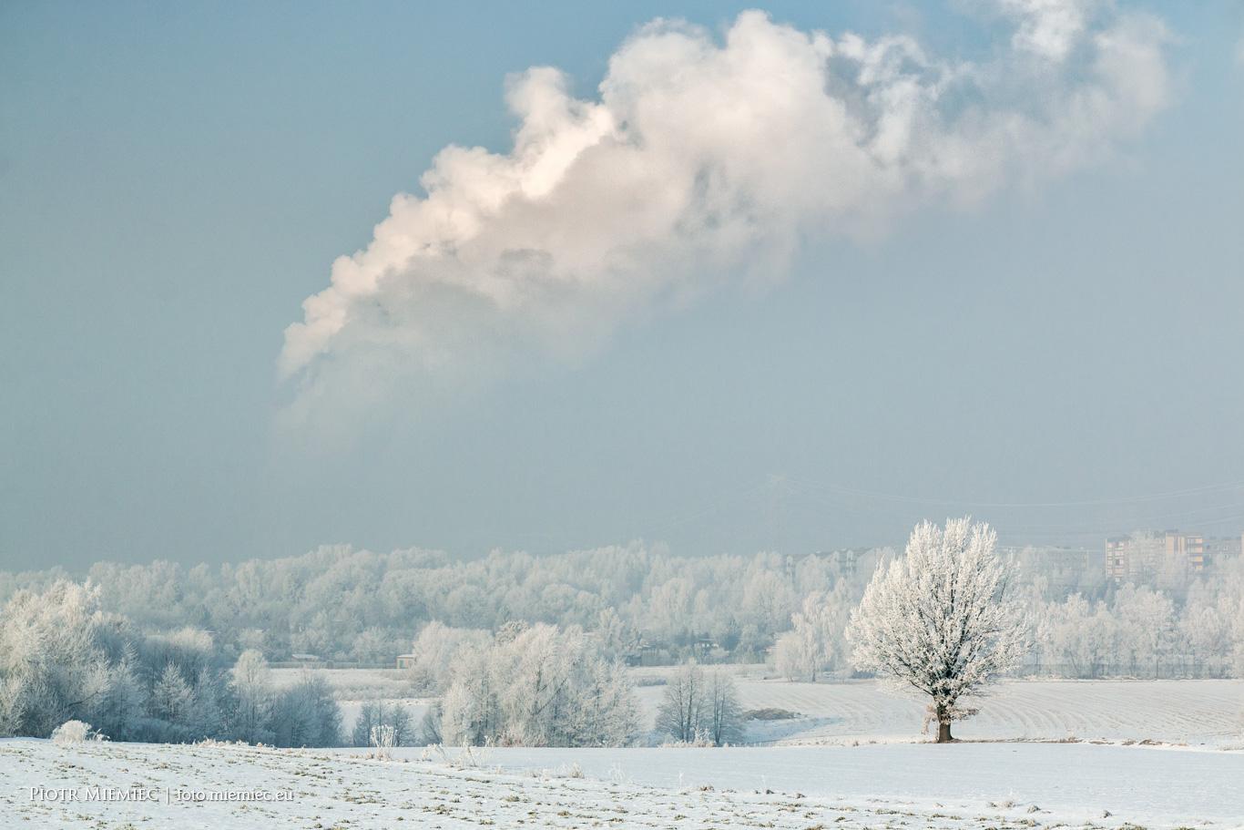 Zimowy krajobraz na Śląsku