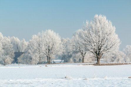 Zimowy krajobraz okolic Wyr