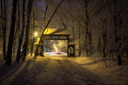 Wieczór w parku