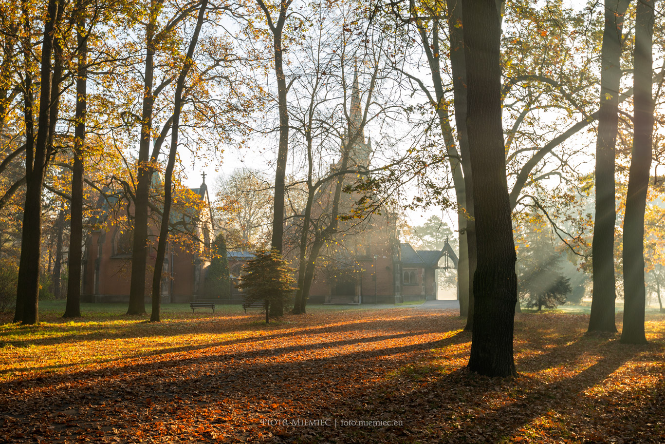 Park w Świerklańcu – październik 2019