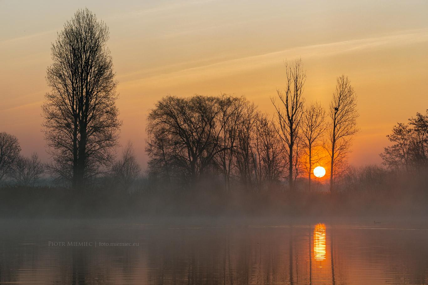 Stawy w Mikulczycach o wschodzie słońca