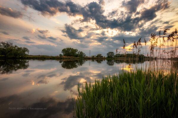 Rzeka Odra w Dobrzeniu Małym