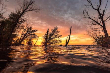 Jezioro Turawskie – lipiec 2020