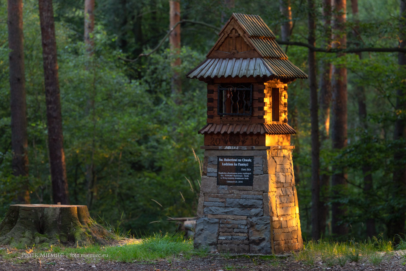 Rudzkie lasy – Schlossberg