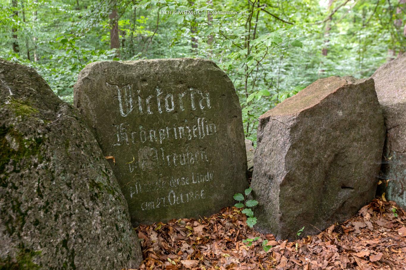 Rudzkie lasy – Góra Wiktorii