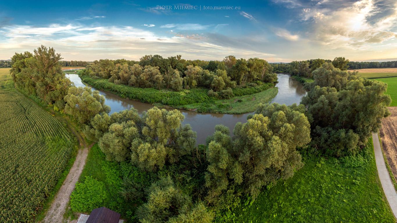 Meandry rzeki Odry