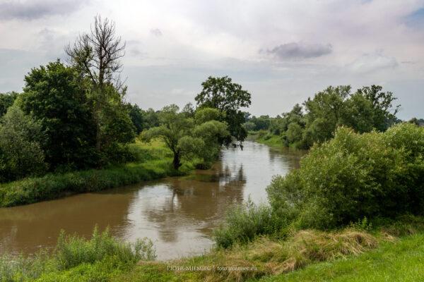 rzeki na śląsku Wisła