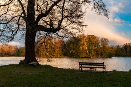 Park w Świerklańcu – maj 2021