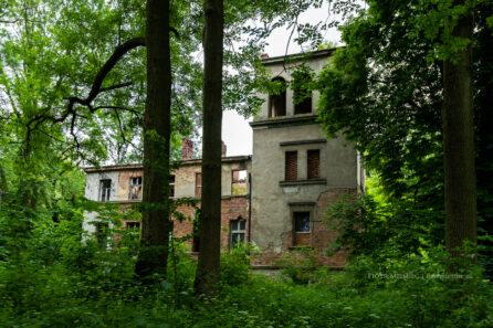 Pałac w Kotliszowicach