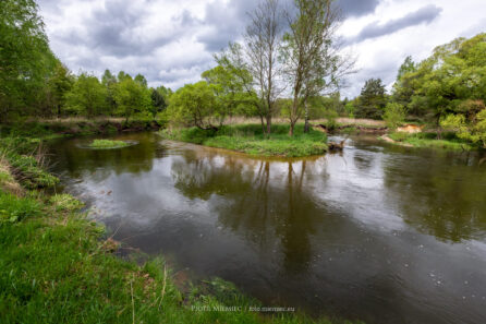 Meandry rzeki Rudy – maj 2021