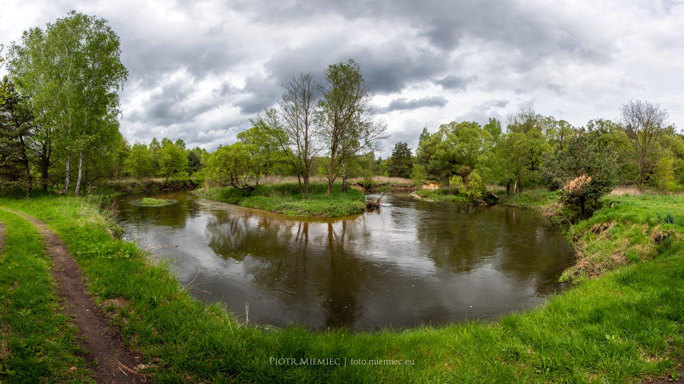 Meandry rzeki Rudy